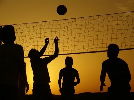СМИ: Харьковские волейболисты заявляют, что у них пытаются незаконно отобрать спортивные площадки на алексеевке