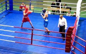 В Харькове стартовал турнир по боксу памяти заслуженного тренера Украины Бориса Андреева